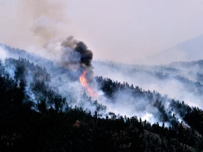 Waldbrand Mitte Mai nahe Ft. Collins. Der Brand erstreckt sich zu diesem Zeitpunkt auf eine ca. 170 Quadratkilometer große Fläche. Foto: Bob Pearson