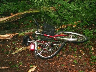Umstürzender Baum tötet Radfahrerin