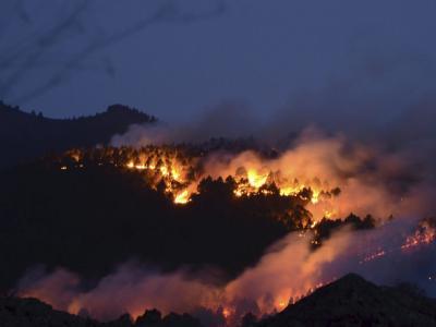Brennende Waldhänge auf der Kanaren-Insel La Palma. Foto: Miguel Calero