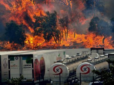 Im Nordosten Spaniens wüten Brände, die Feuerwehr der Region ist überfordert. Foto: Robin Townsend