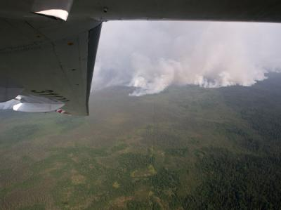 Wieder verheerende Brände in Russland: Besonders betroffen ist Sibirien. Foto: Yakov Andreev/RIA Novosti