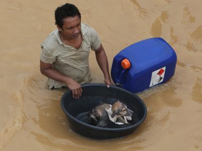 Ein Philippiner muss seine Hunde in einer Schale durch die überfluteten Straßen der Stadt Marikina führen. Foto: Rolex Dela Pena