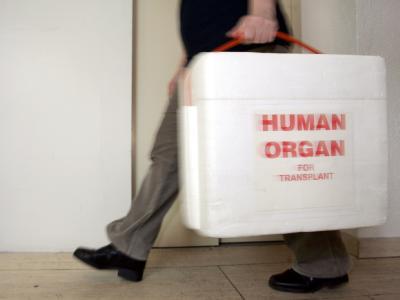 Gesundheitsminister Daniel Bahr fordert die Bestrafung krimineller Machenschaften bei der Organvergabe. Foto: Frank May