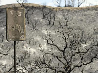Nach Schätzungen hat das Feuer an der Costa del Sol eine Fläche von mindestens 1000 Hektar zerstört. Foto: Carlos Diaz