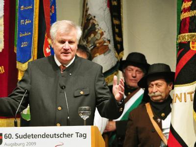 Der bayerische Ministerpräsident Horst Seehofer (CSU) spricht beim Sudetendeutschen Tag.
