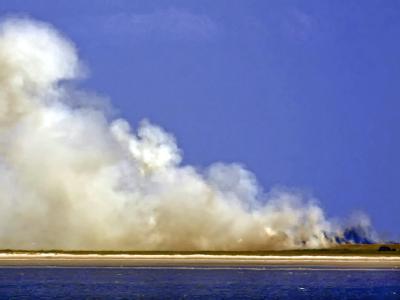 Flächenbrand auf Mellum