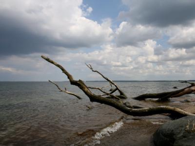 Der Ostseestrand bei Lübeck-Travemünde. Gibt es jetzt auch Piraten in der Ostsee?