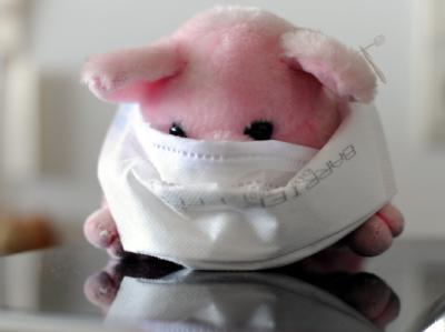 Plüschschwein mit Mundschutz: Frankreich bereitet sich wegen der Schweinegrippe auf Fernunterricht per Internet vor.