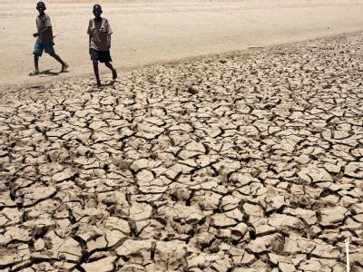 Globale Erwärmung: Im Norden von Kenia machen Hunger und Dürre den Menschen und Tieren schwer zu schaffen.