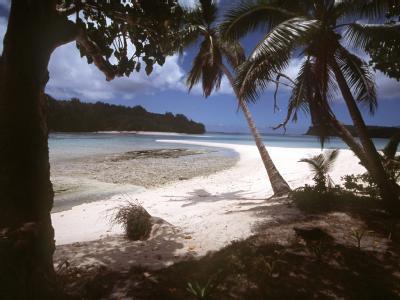 Der Tsunami hat in der Inselwelt des Südpazifiks wahrscheinlich 120 Menschen getötet.