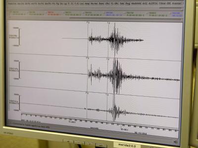 Ein Seismograph zeichnet Erdstöße auf. (Symbolbild)