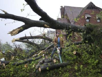 Aufräumarbeiten: Durch die heftige Sturmfront wurden unzählige Bäume umgerissen.