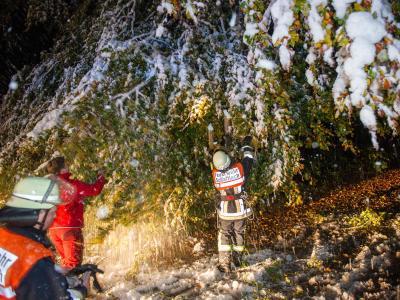Zwei Feuerwehrmänner versuchen, einen Baum vom nassen Neuschnee zu befreien. Foto: Marc Müller