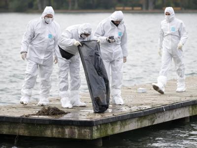 Polizisten begutachten im November 2012 am Maschsee den Inhalt einer von einem Polizeitaucher gefundenen Mülltüte. Foto:Emily Wabitsch