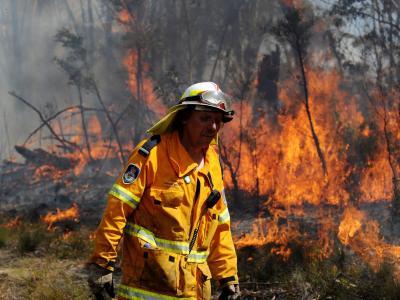 Hunderte Feuerwehrleute versuchen die Brände unter Kontrolle zu bringen. Foto: Dan Himbrechts