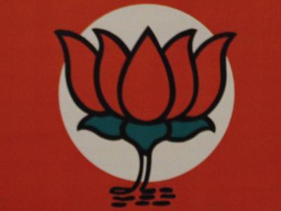 Die Lotusblume ist das Symbol der indischen Partei BJP. Foto:Str