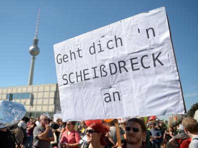 Volkes Stimme:Demonstration in Berlin für Bürgerrechte und Datenschutz. Foto: Rainer Jensen/Archiv