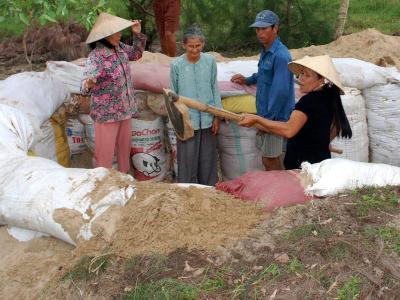 Vorbereitung auf den Taifun: Vietnamesen beimAusheben eins provisorischen Schutzes vor dem Sturm «Haiyan». Foto: str