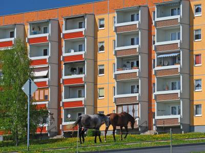 Zwei Pferde weiden im sächsischen Döbeln vor einem sanierten Plattenbau. Foto: Wolfgang Thieme/Archiv
