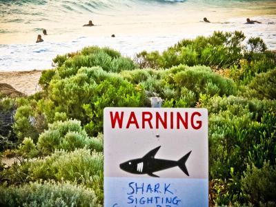Ein Warnschschild an einem Strand im Westen Australiens. Foto: Rebecca Le May