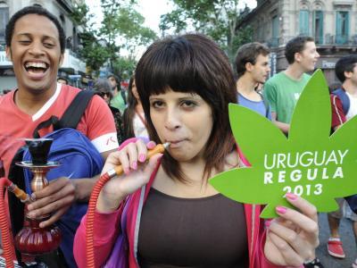 Uruguay hat den begrenzten Handel mit Marihuana legalisiert. Foto: Sandro Pereyra