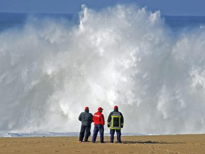 Suchtrupps an der Atlantikküste südlich von Lissabon. Foto: Rui Minderico