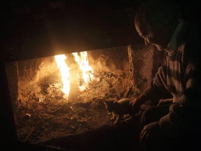 Aus Geldnot sind viele Griechen dazu übergegangen, mit illegal geschlagenem Holz zu heizen. Foto:Orestis Panagiotou