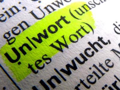 Am 14. Januar wird das «Unwort des Jahres» bekanntgegeben. Foto: Stephan Jansen
