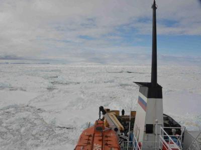 Die «MV Akademik Shokalskiy» sitzt seit dem 1. Weihnachtstag im Eis fest. Foto: Australian Maritime Safety Authority