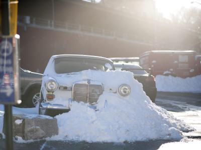 Ein Schneesturm beschert Millionen Amerikanern einen bitterkalten Start ins neue Jahr. Foto: Sebastian Gabriel