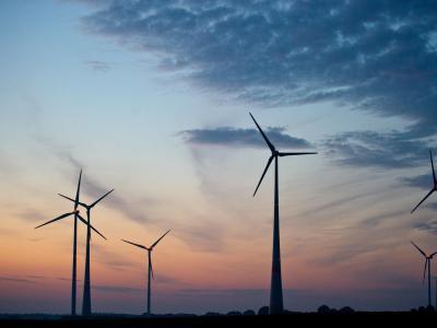 Windräder im ersten Licht der Morgensonn. Foto: Patrick Pleul