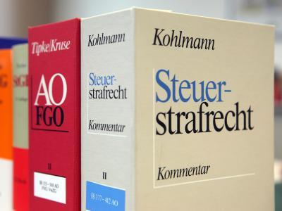 Der Ankauf von CDs mit Steuerdaten hat die Zahl der Selbstanzeigen drastisch in die Höhe getrieben. Foto: Oliver Berg/Archiv
