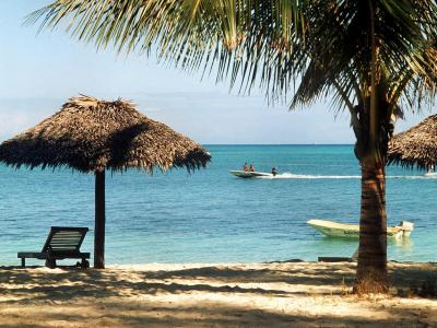 Als Steueroasen werden Länder bezeichnet, die keine oder nur sehr niedrige Steuern auf Einkommen oder Vermögen erheben - wie die Bahamas. Foto: Roland Witschel/Archiv