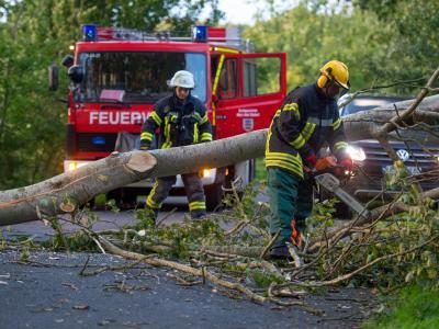 Ein Feuerwehrmann zerkleinert in Ebstorf (Niedersachsen) einen umgestürzten Baum. Foto: Philipp Schulze