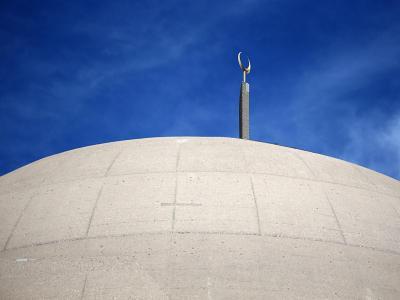Das Dach der Moschee der Türkisch-islamischen Union Ditib in Köln. Foto: Oliver Berg/Symbolbild
