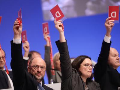 Der Parteivorstand stimmt über Anträge zu Sondierungsgesprächen für eine Große Koalition ab. Foto: Kay Nietfeld