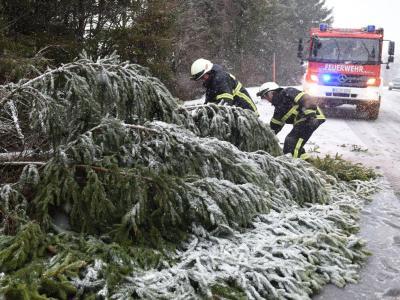 Feuerwehrmänner zersägen auf der B500 am Feldberg im Schwarzwald einen vomSturm umgestürzten Baum. Foto: Patrick Seeger