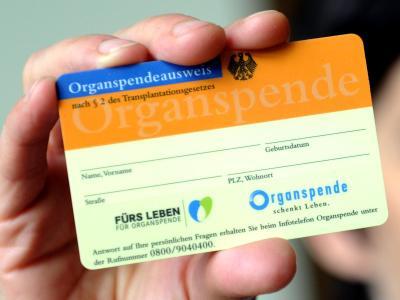 Organspende-Ausweis:Die Spenderzahlen sind auf den niedrigsten Stand seit 20 Jahren gesunken. Foto: Caroline Seidel