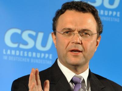 CSU-Landesgruppenchef Friedrich: «Die FDP muss mit ihren Fragen selber zurechtkommen.»